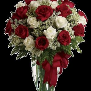 """2 dozen red and white roses roses"""