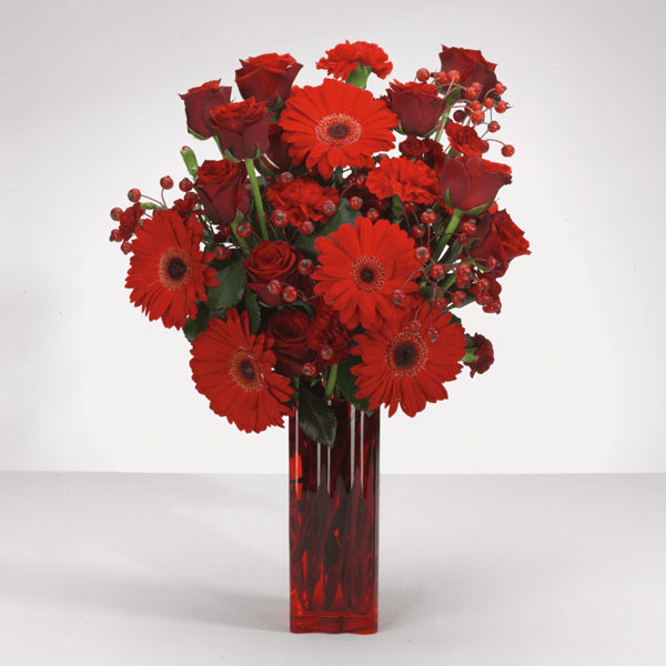 """""""Wild and WOW Red Roses and Gerbera Daisies in a red vase"""""""