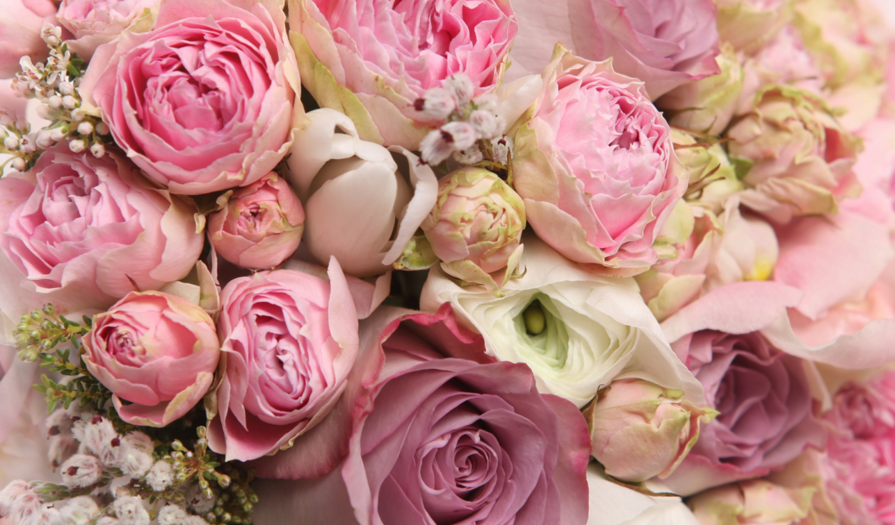 """""""Order Flowers from Eden Florist for EVERY Occasion!"""""""