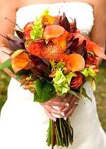 """Fall Calla Lilies in Hand"""