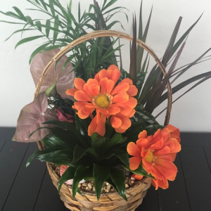 """""""Green Garden Basket of Seasonal Plants and a touch of flowers"""""""