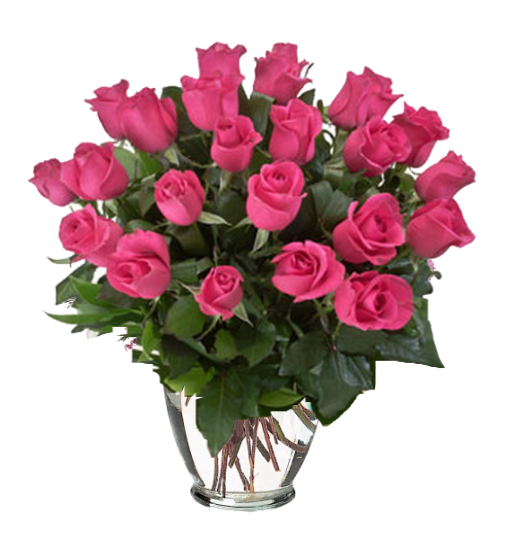 """""""Passionate Pink - 24 Hot Lady Roses in a vase"""""""