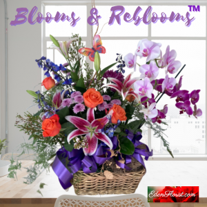 """Blooms and Reblooms"""