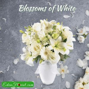 """""""Blossoms of White"""""""