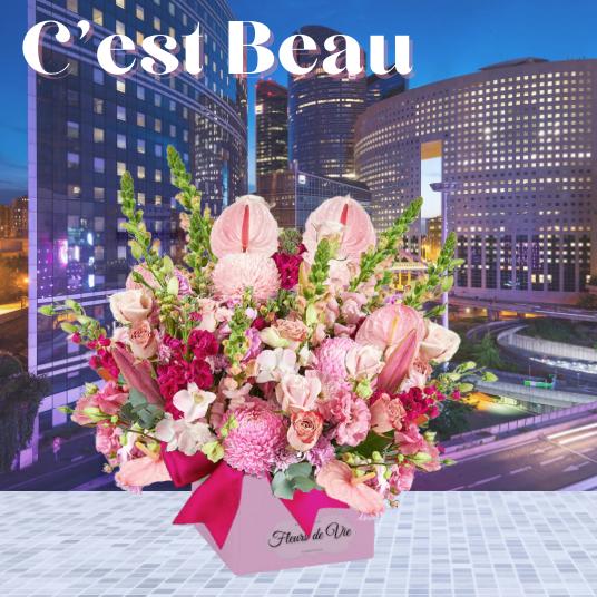 """""""C'est Beau"""""""