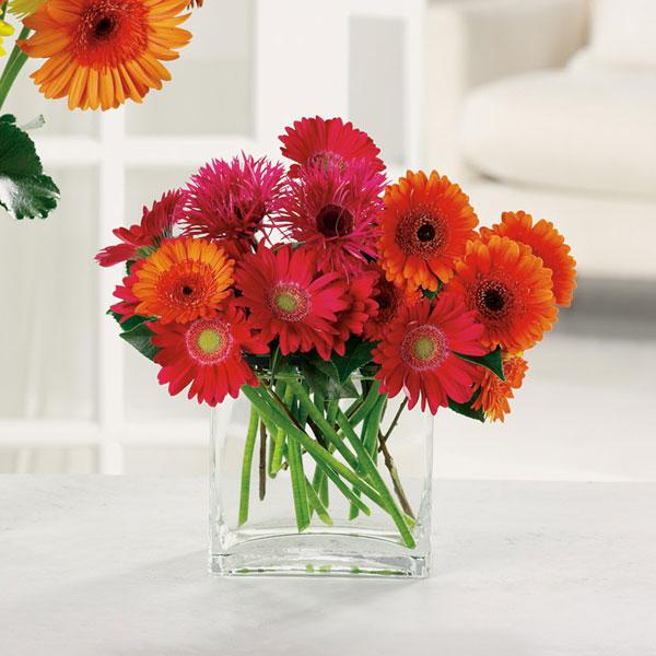 """Charming Gerbera Daisies in glass vase"""