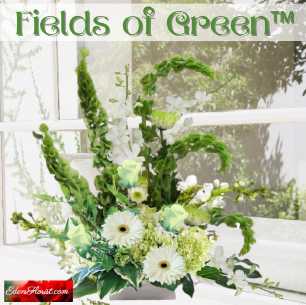 """""""Fields of Green"""""""