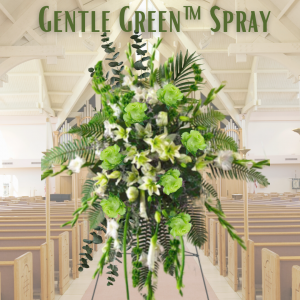 """Gentle Green Spray"""