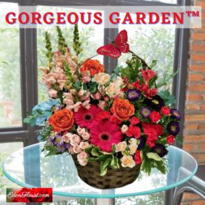 """Gorgeous Garden"""