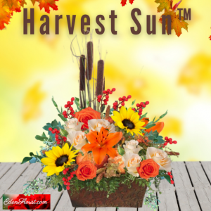 """Harvest Sun Bouquet"""
