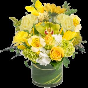 """Hello Sunshine bright yellow floral arrangement"""