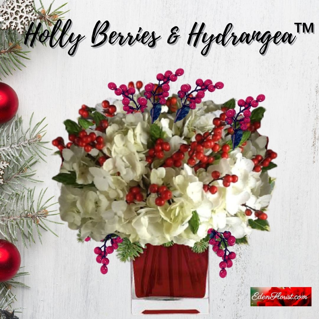 """""""Holly Berries and Hydrangea"""""""