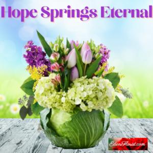 """""""Hope Springs Eternal"""""""