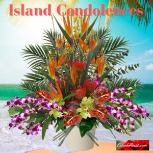 """""""Island Condolences"""""""