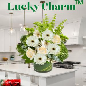 """""""Lucky Charm"""""""