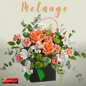 """""""Melange'"""