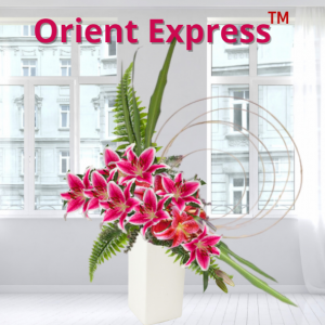 """""""Orient Express™"""""""