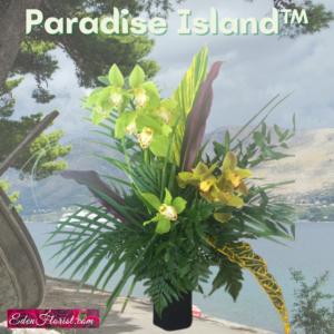 """""""Paradise Island"""""""