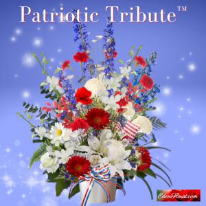 """""""Patriotic Tribute"""""""