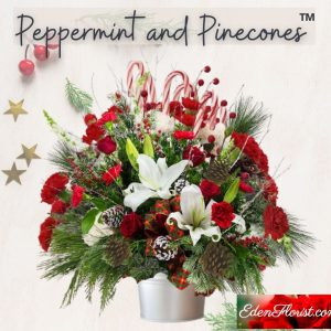 """""""Peppermint and Pinecones"""""""
