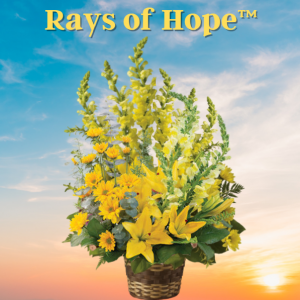 """""""Rays of Hope"""""""
