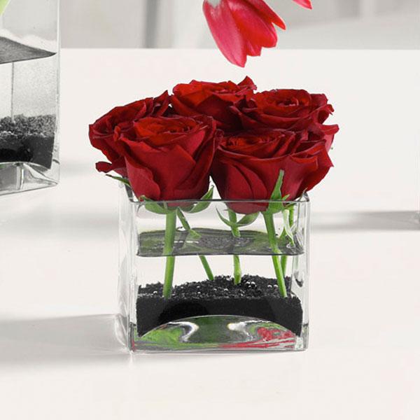 """Roses Squared"""