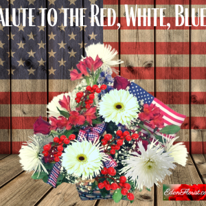 """""""Salute Red White and Blue"""""""