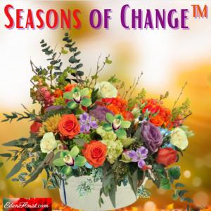 """""""Seasons of Change"""""""