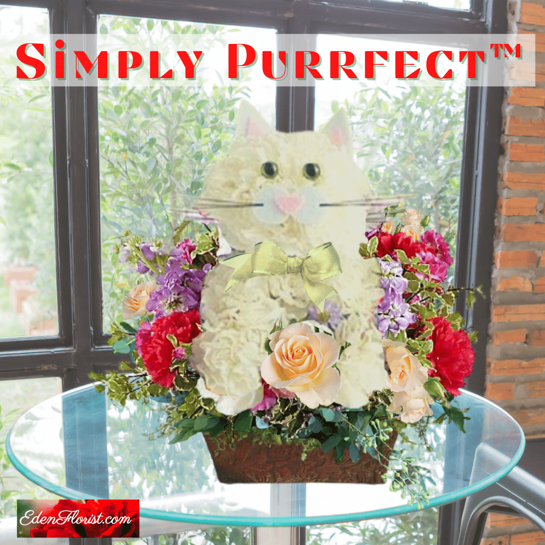 """""""Simply Purrfect"""""""