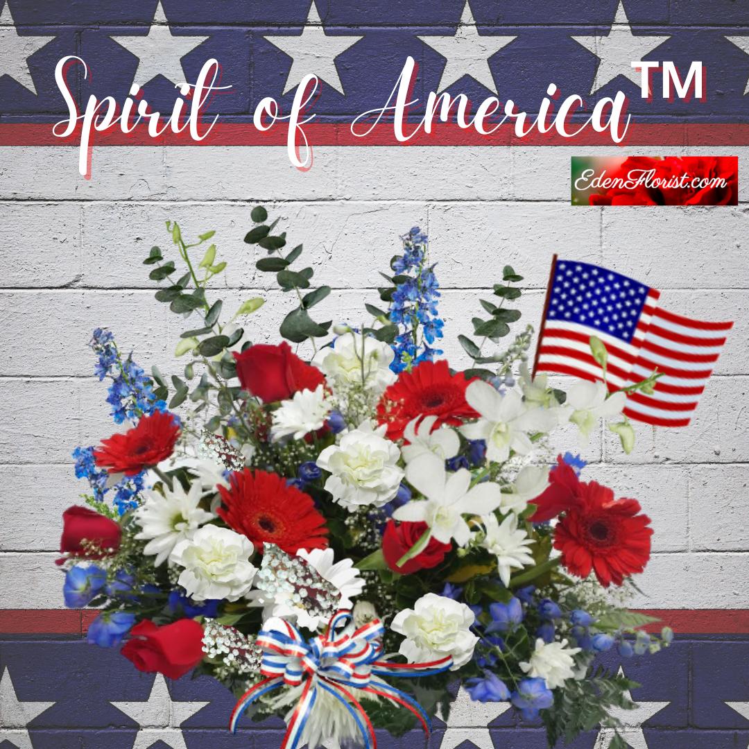 """Spirit of America"""