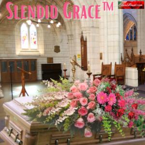 """""""Splendid Grace'"""