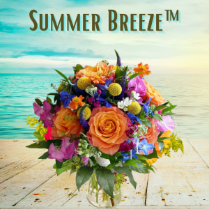 """""""Summer Breeze"""""""