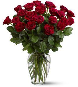 """""""Two dozen roses"""""""