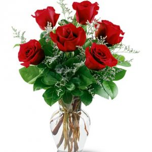 """""""six red roses"""""""