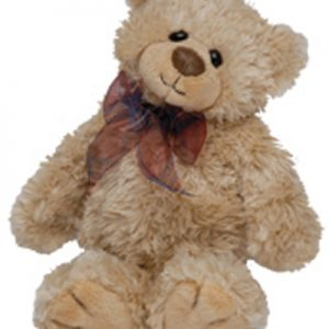"""nantucket teddy bear"""
