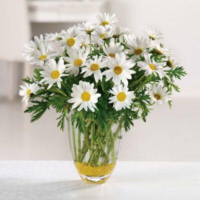 """daisy daze bouquet"""