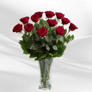 """""""dozen red roses"""""""
