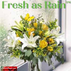 """""""fresh as rain"""""""