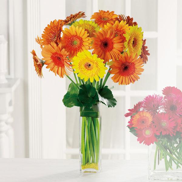 """""""Gerbera Garden™ Bouquet"""""""