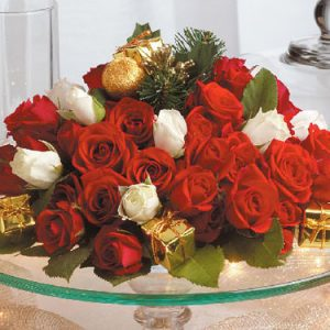 """""""gift of holiday roses"""""""