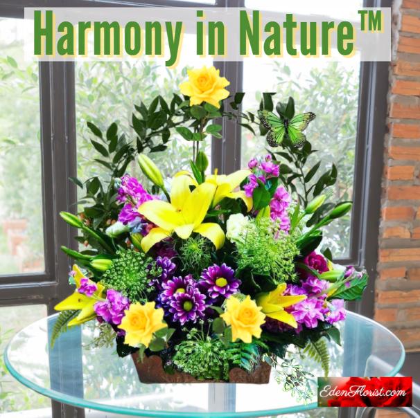 """Harmony in Nature"""
