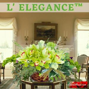 """l'elegance Orchids"""