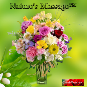 """""""Nature's Message"""""""