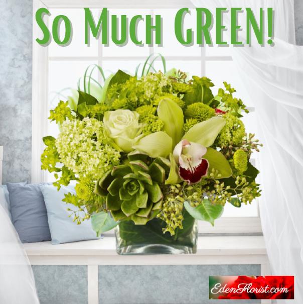 """""""so much green"""""""