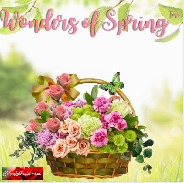 """""""Wonders of Spring"""""""